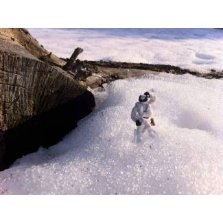 Image of: A lone arctic ranger...