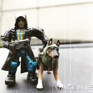 Image of: Fallout Customs