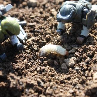 Image of: Outdoor ODST's: Grub Time!