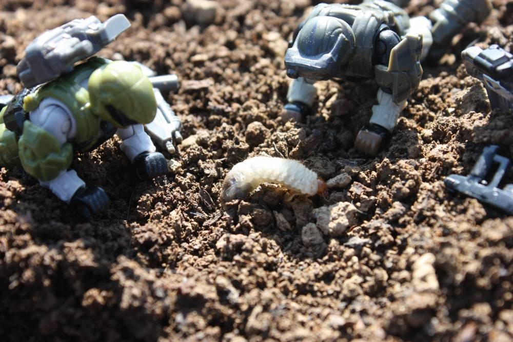 Outdoor ODST's: Grub Time!