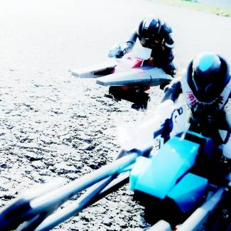 Image of: Racing Sparrow's