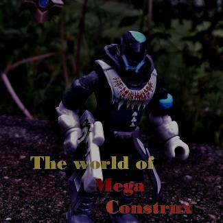 Image of: The World of Mega construx