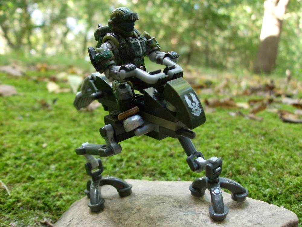 Image of: UNSC Blind Wolf
