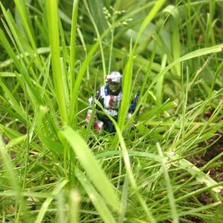 Image of: An ODSTs Story: Through the Grasslands