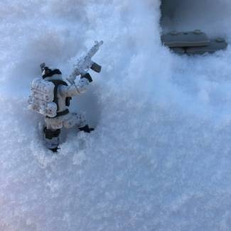Image of: Snow Soldier