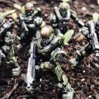 Image of: Spartans in the garden
