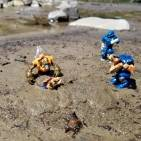The covenant's beach day