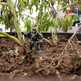 Image of: Unsc marine has fun at the store