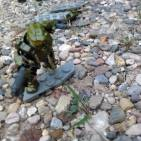 Image of: master chief versus bugs/ some other things