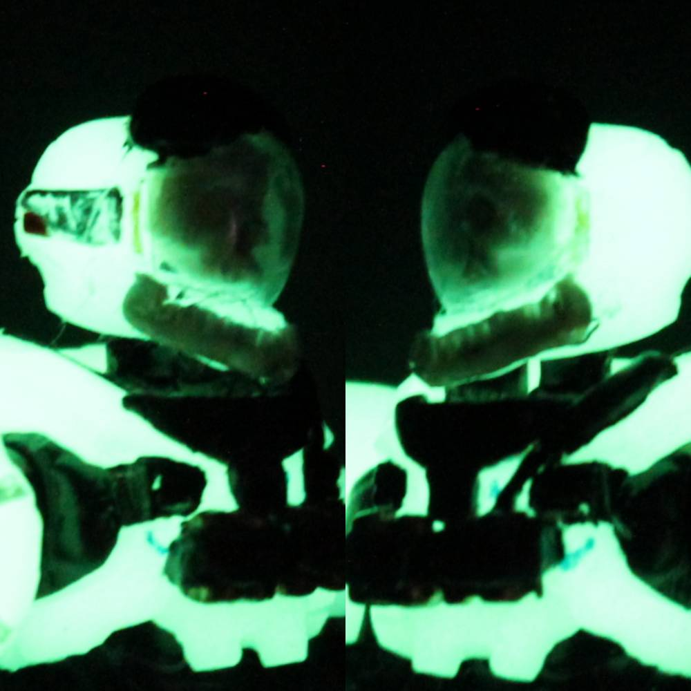 Image of: Haunted Spartan