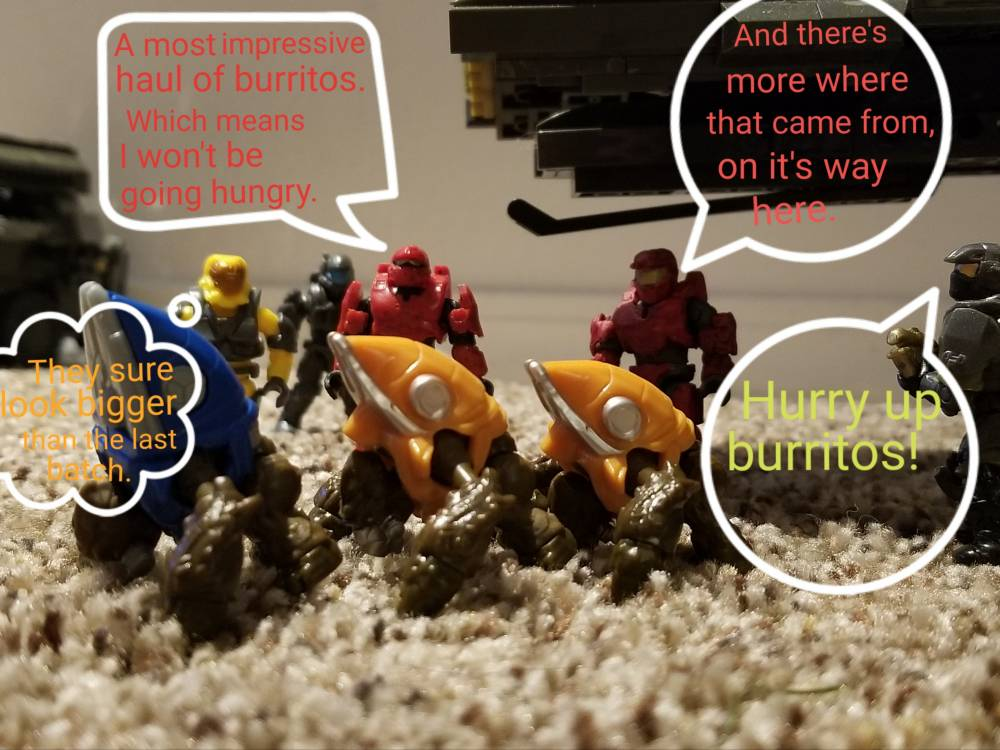 Image of: A day at Shrub Industries: Burrito delivery
