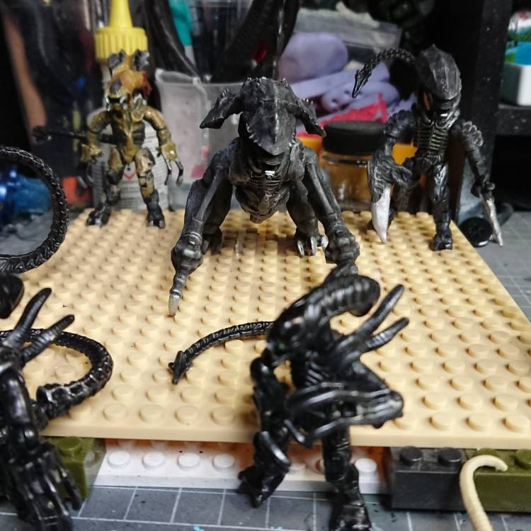 Image of: custom xenomorph project