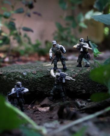forest-ops