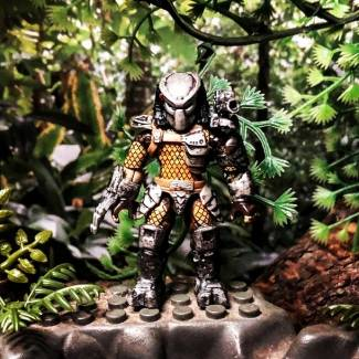 Image of: Predator