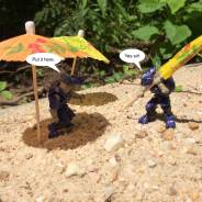 Covenant Vacation