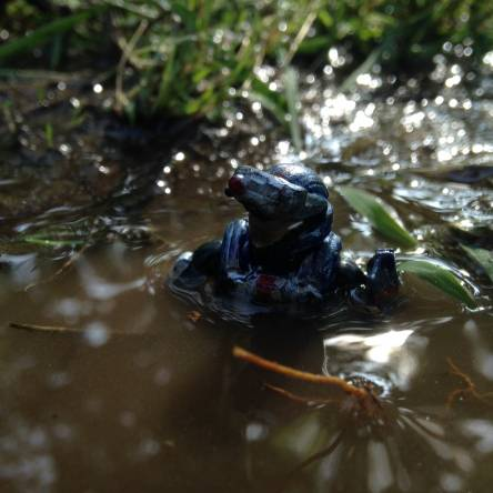 An ODSTs Story 10: Wetlands