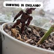 snowing? in england?