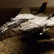 F14 tomcat finally finished and built