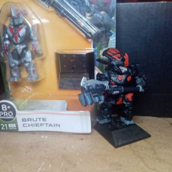 Another one chieftain